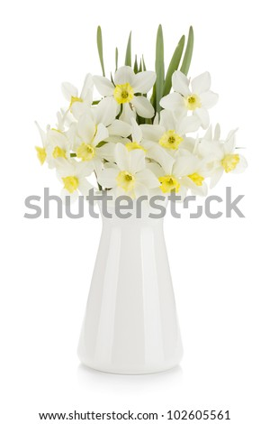 Multicolored tulips in flowerpot. Isolated on white background - stock photo