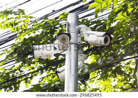 Multiple Angle Outdoor CCTV Camera on the Pole near the Tree - stock photo