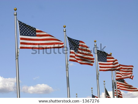 Multiple Flags Waving in the Wind