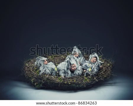 Multiple scene of a bird-child in the nest