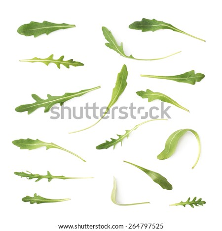 Multiple signle eruca sativa rucola arugula fresh green rocket salad leaves set, isolated over the white background