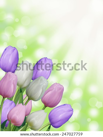 multiple white pink and purple easter spring tulips with abstract green bokeh background and sun rays