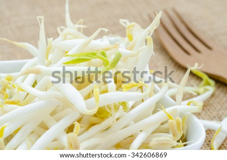 Mung bean sprouts in white cup on sack background - stock photo