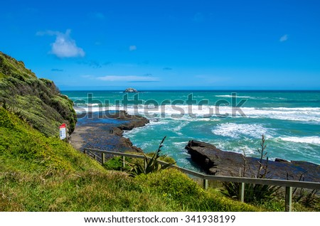 Muriwai Regional Park at the West Coast of the North Island in Auckland,New Zealand