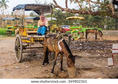 MURSHIDABAD, INDIA - JANUARY 23: An Indian coachman waits for passengers on his horse cart on January 23, 2016 in Murshidabad, West Bengal, India. Horse carts are very popular in Murshidabad. - stock photo