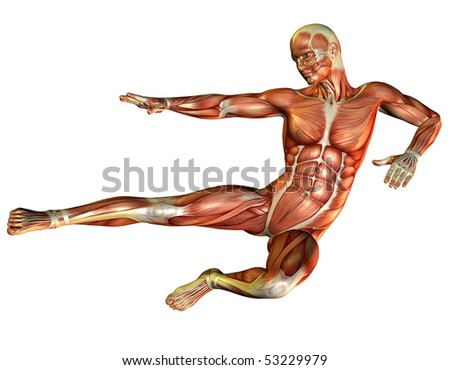 muscle and motion study in men - stock photo