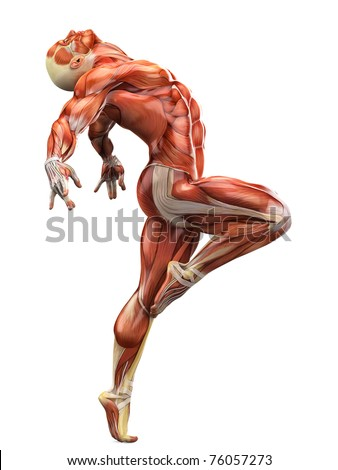 muscle man ballet 2 - stock photo