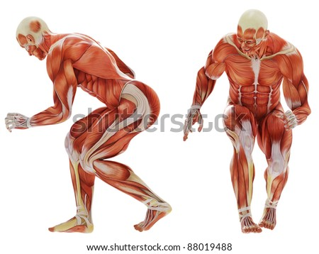 muscle man crouched - stock photo