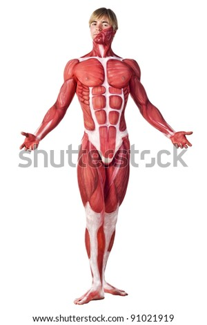 Muscle man front view. Creative body-art. Isolated over white - stock photo