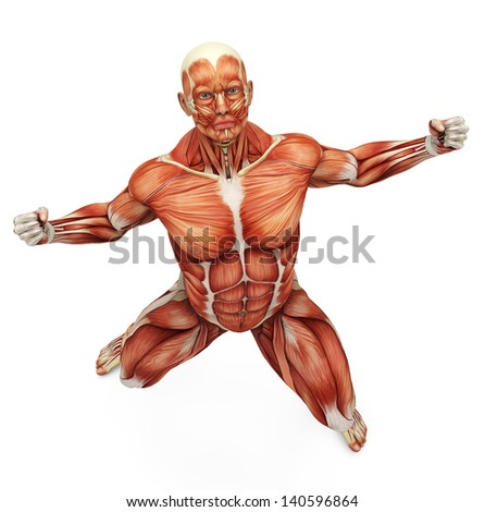Muscle Man Strong Pose Bird Eye Stock Illustration 140596864 ...