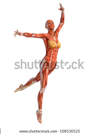 muscle woman ballet - stock photo