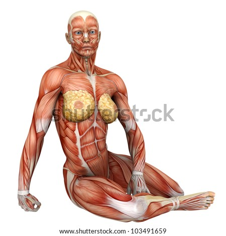 muscle woman on the floor