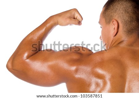 Muscled male model bodybuilder - stock photo