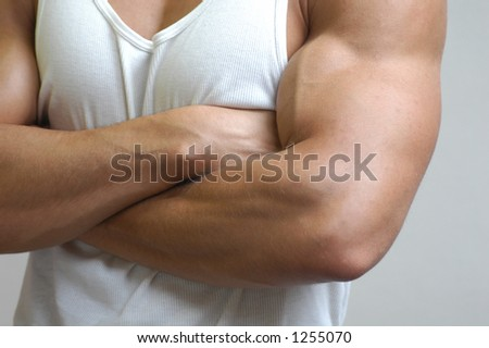 Muscular male model - stock photo