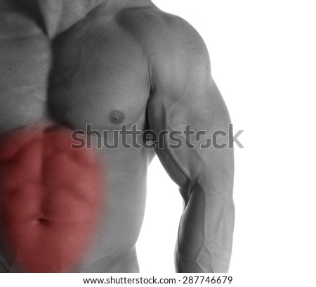 Muscular male torso with abs selected on white background - stock photo
