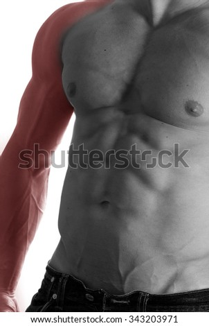 Muscular male torso with arm selected on white background - stock photo