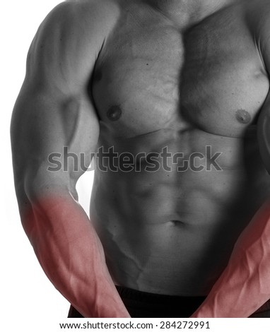 Muscular male torso with arms selected on white background
