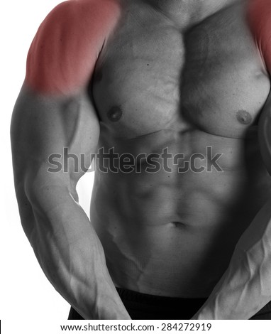 Muscular male torso with shoulders selected on white background