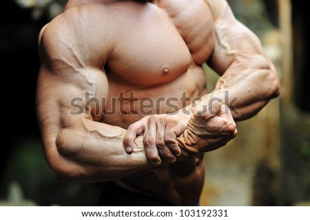 Muscular torso bitsep - stock photo