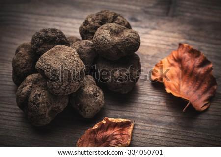 mushroom black truffle - stock photo
