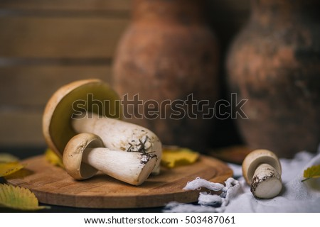 Mushroom boletus on wooden background
