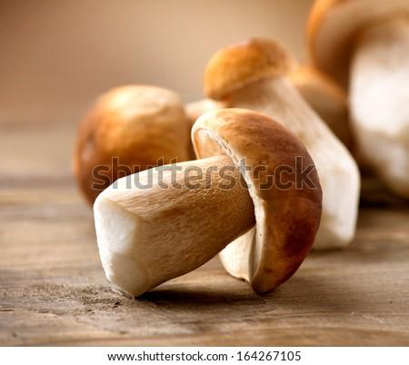 Mushroom Boletus over Wooden Background. Autumn Cep Mushrooms. Mushrooms Picking  - stock photo
