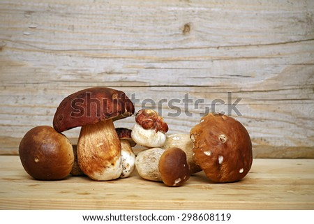 Mushroom Boletus over Wooden Background. Autumn Cep Mushrooms picking - stock photo
