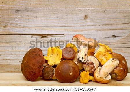 Mushroom Boletus over Wooden Background. Autumn Cep Mushrooms picking. - stock photo