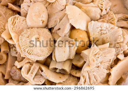 Mushroom russula boiled and ready for frying or canning - stock photo