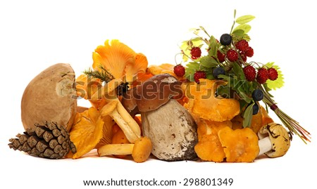 Mushrooms, berries, pine cones, strawberries and blueberries isolated on white background. gifts of the forest. - stock photo