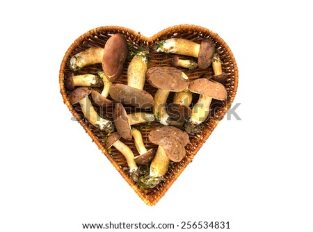 mushrooms fungi cep boletus Xerocomus badius in heart form basket isolated on white - stock photo
