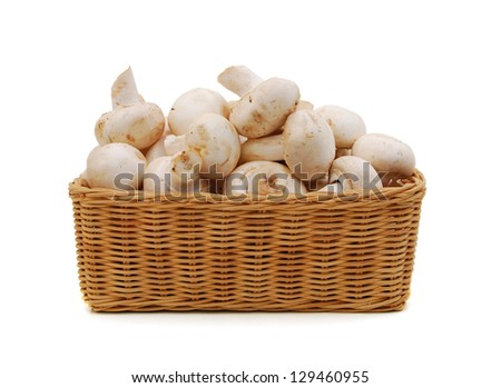 mushrooms in a basket - stock photo