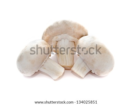 mushrooms isolated on a white background