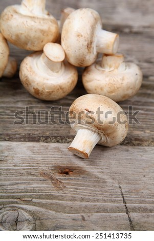 Mushrooms on old wooden background - stock photo