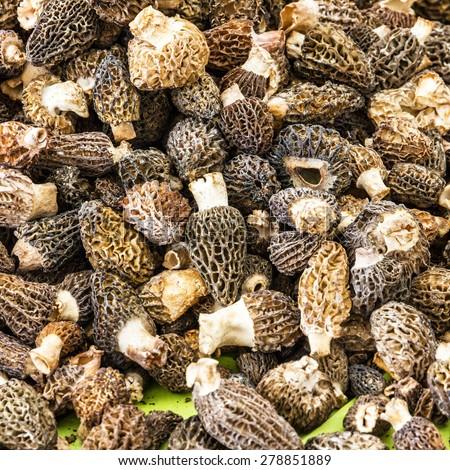 Mushrooms truffles - stock photo