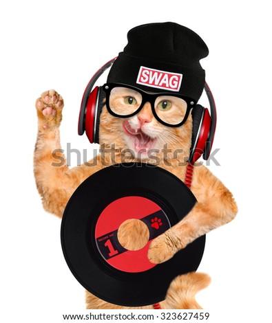 music headphone vinyl record cat - stock photo