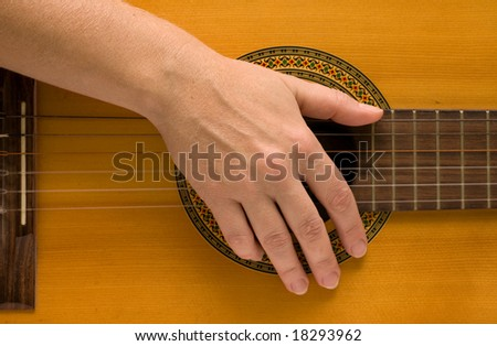 musician plays a musical instrument,guitarist and a guitar