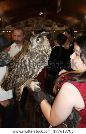 MUSKOGEE, OK - MAY 24: A handler shows a large owl trained to perform at the Oklahoma 19th annual Renaissance Festival on May 24, 2014 at the Castle of Muskogee in Muskogee, OK - stock photo