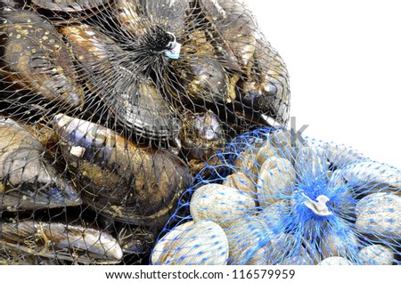 mussels and clams in two net bags - stock photo
