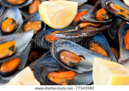 mussels boiled with a squeeze of lemon - stock photo