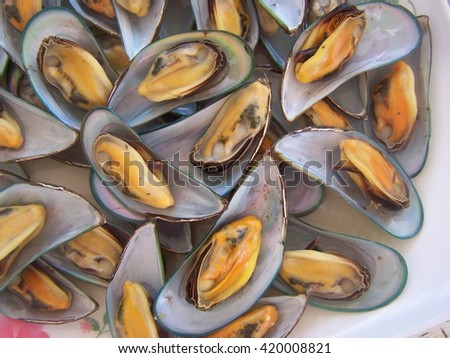 Mussels close up - selective focus - stock photo
