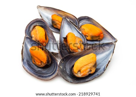 mussels cooked ready to eat - stock photo