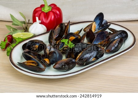 Mussels in the bowl with parsley branch - stock photo