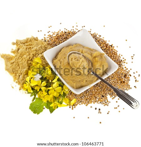 Mustard  dish sauce and powder, seeds and mustard flower  isolated on white - stock photo