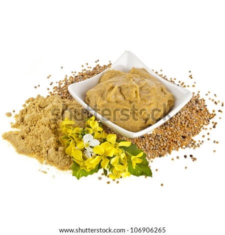 Mustard  dish sauce and powder, seeds with mustard flower bloom on white - stock photo