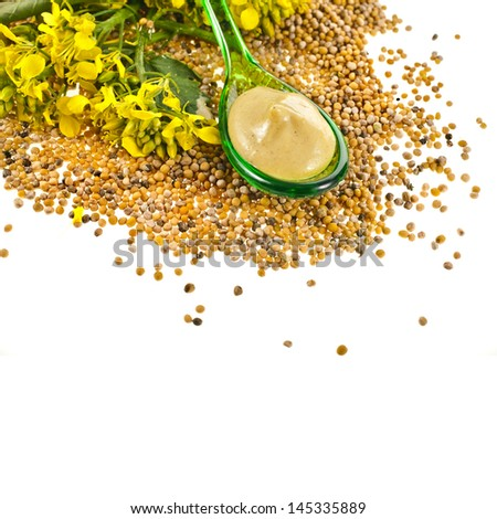 Mustard sauce  in spoon and mustard flower isolated on white background - stock photo