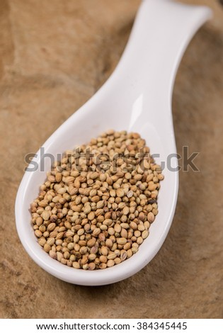 Mustard seeds in white spoon on stone - stock photo