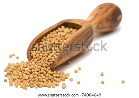Mustard seeds in wooden scoop over white background - stock photo