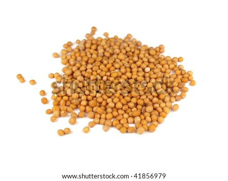 Mustard seeds isolated on white - stock photo