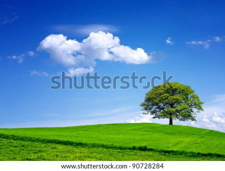 My environment - stock photo